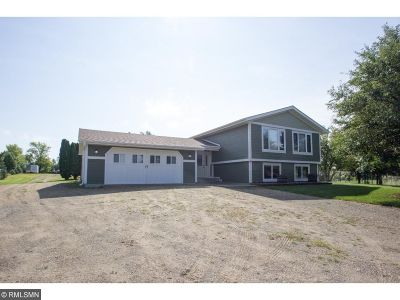 New Richmond Single Family Home For Sale: 2117 County Rd C