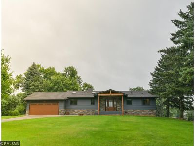 Hennepin County Single Family Home For Sale: 6358 Willow Lane