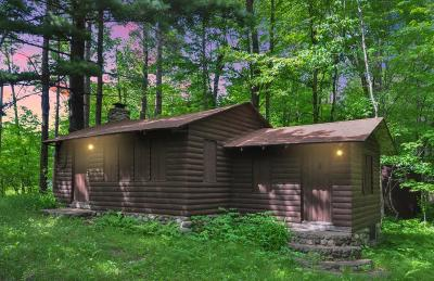 Brainerd Single Family Home For Sale: 8404 Hiawatha Avenue