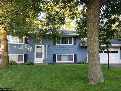 New Brighton Single Family Home For Sale: 519 Continental Drive
