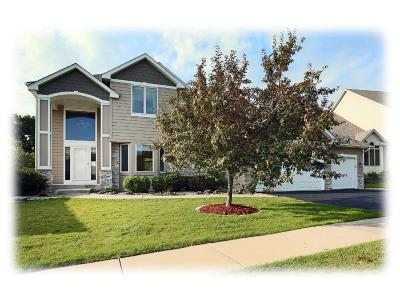 Maple Grove Single Family Home For Sale: 16369 69th Place N