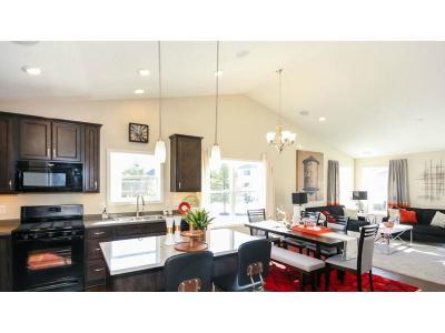 Rosemount Single Family Home For Sale: 13866 Apollo Avenue