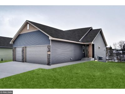 Chisago County Single Family Home For Sale: 3 Lake Lane