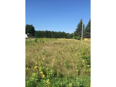 Residential Lots & Land For Sale: 413th Avenue