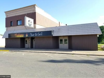 Coleraine MN Commercial For Sale: $280,000