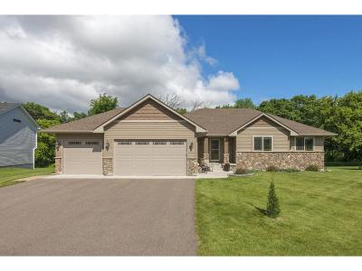 Lindstrom Single Family Home For Sale: 31735 Marshview Court