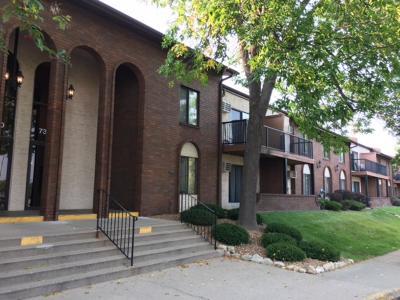 Edina Condo/Townhouse For Sale: 7320 York Avenue S #207