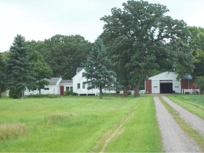 McLeod County Single Family Home For Sale: 15264 200th Street