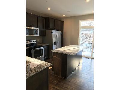 Eagan Condo/Townhouse For Sale: 4035 River Valley Way