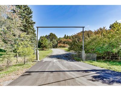 Hugo Single Family Home For Sale: 13497 Homestead Avenue N