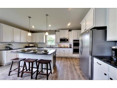 Blaine Single Family Home For Sale: 12471 Isetta Court NE