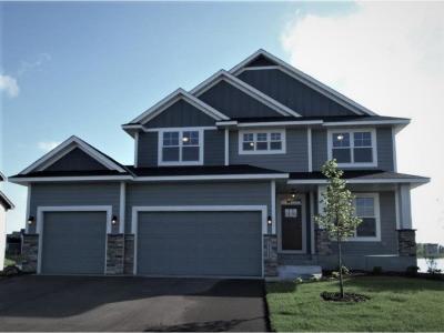 Ham Lake Single Family Home For Sale: 15309 Bataan Street NE