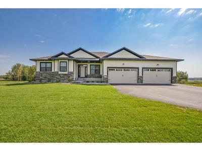 Ham Lake Single Family Home For Sale: 13639 Ghia Street NE