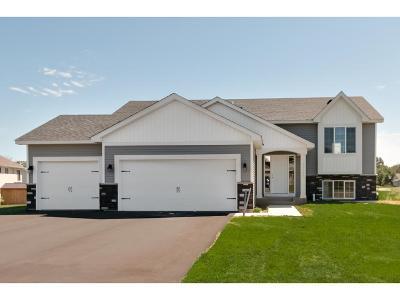 Elk River Single Family Home For Sale: 19131 Johnson Street NW