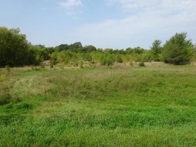 Annandale Residential Lots & Land For Sale: 6xxx County Road 3 NW