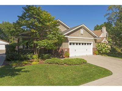 Edina Single Family Home For Sale: 4010 W 44th Street
