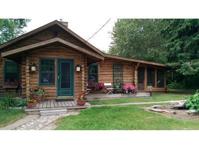 Grand Rapids Single Family Home For Sale: 36019 Northstar Lake Lane