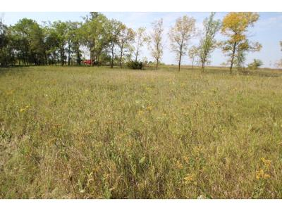 Roseville Twp MN Residential Lots & Land For Sale: $9,900