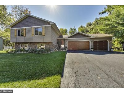 Lakeville Single Family Home For Sale: 8460 169th Court W