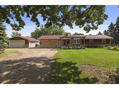 Andover Single Family Home For Sale: 16981 Tulip Street NW