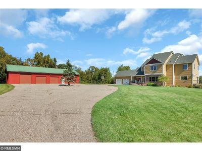 Stearns County Single Family Home For Sale: 25818 Island Lake Road