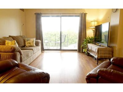 Minneapolis Condo/Townhouse For Sale: 3131 Excelsior Boulevard #602