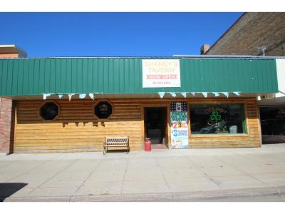 Sauk Centre Commercial For Sale: 510 Sinclair Lewis Avenue
