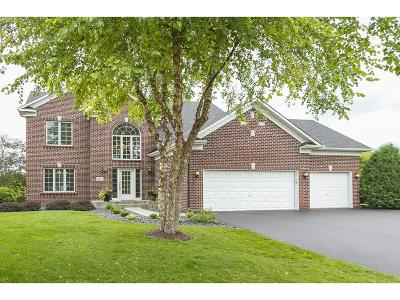 Hennepin County Single Family Home For Sale: 4041 Turtle Road