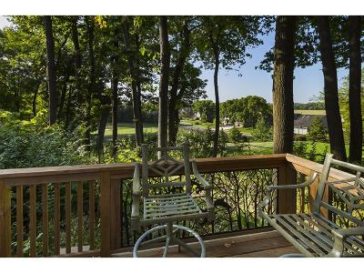 Eden Prairie Single Family Home For Sale: 9469 Olympia Drive