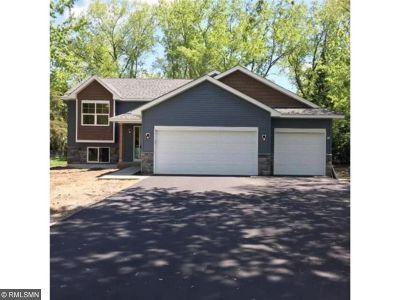 Anoka Single Family Home For Sale: 1035 Washington Street
