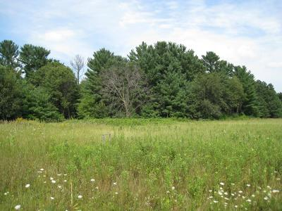 Residential Lots & Land For Sale: 24-3/4 Street