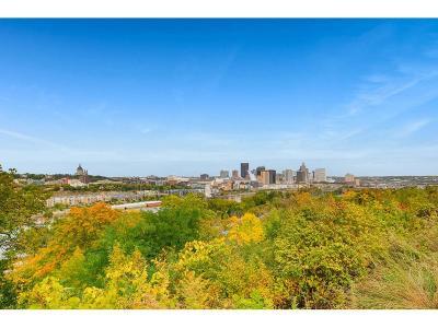 Saint Paul Single Family Home For Sale: 374 Cherokee Avenue