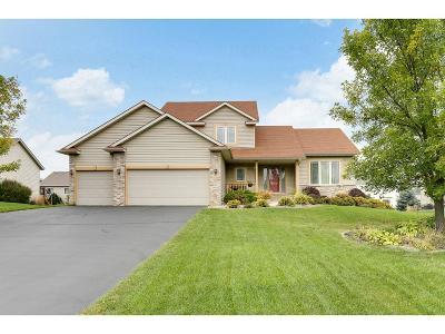 Farmington Single Family Home For Sale: 19889 Butternut Trail