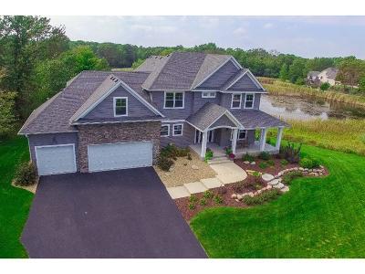 Ham Lake Single Family Home For Sale: 13412 Dunkirk Street NE
