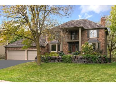 Eden Prairie Single Family Home For Sale: 9348 Olympia Drive