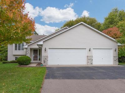 Lakeville Single Family Home For Sale: 16261 Heath Court