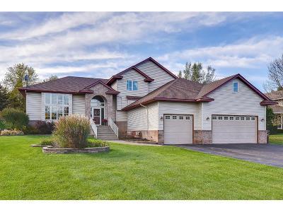 Elk River Single Family Home For Sale: 20128 Polk Street NW