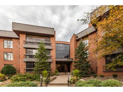 Edina Condo/Townhouse For Sale: 7250 Lewis Ridge Parkway #208
