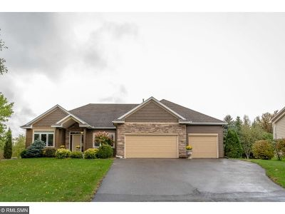 Lakeville Single Family Home For Sale: 9318 178th Street W