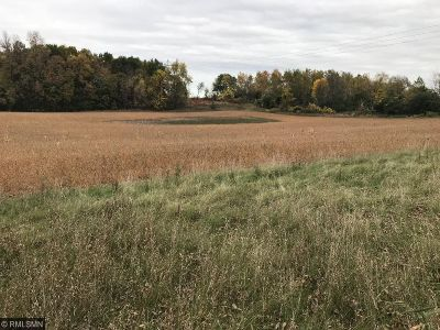 Wright County Residential Lots & Land For Sale: 2452 50th Street NE