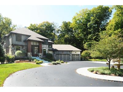 Carver County Single Family Home For Sale: 395 Highway 7