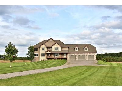 Sherburne County Single Family Home For Sale: 6339 140th Avenue