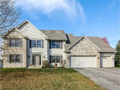 Lakeville Single Family Home For Sale: 17925 Flushing Hills Lane