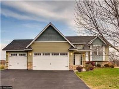 Watertown MN Single Family Home For Sale: $239,900