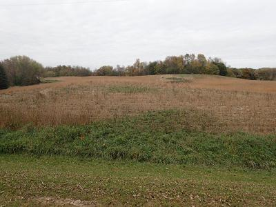 Buffalo Residential Lots & Land For Sale: Xxx15.7 15th Street SW