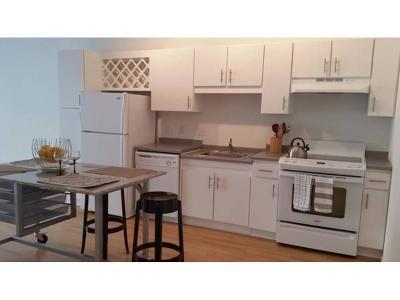 Minneapolis MN Rental For Rent: $1,440