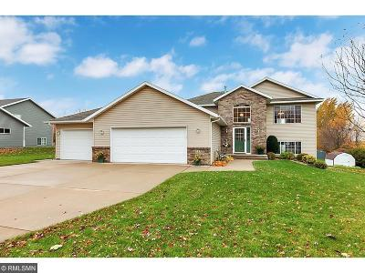 Saint Joseph Single Family Home For Sale: 317 Pondview Lane