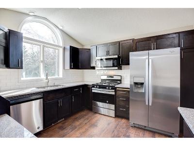Sherburne County Single Family Home For Sale: 31192 131st Street
