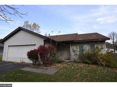 Farmington Single Family Home For Sale: 5119 Lower 183rd Street W