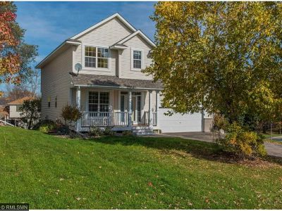 Maple Grove Single Family Home For Sale: 9335 Niagara Lane N